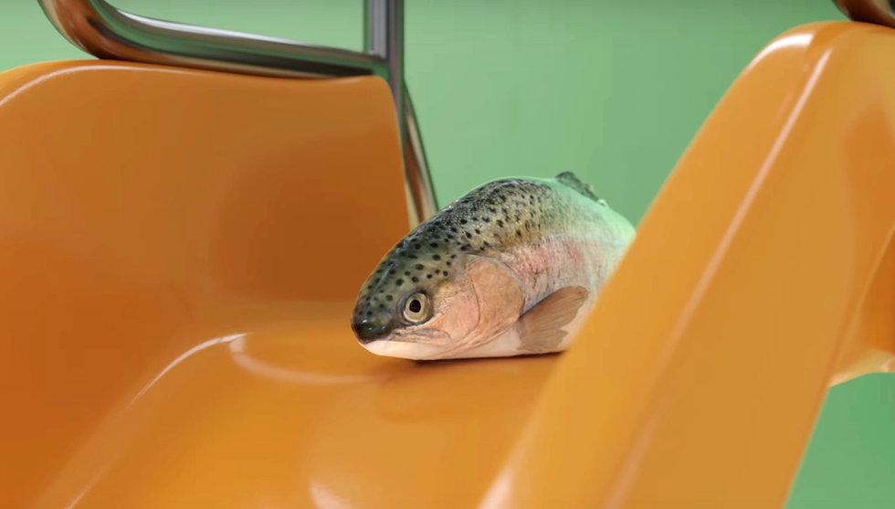 Breakit - Klarnas fiskreklam anklagas för att uppmana till djurplågeri