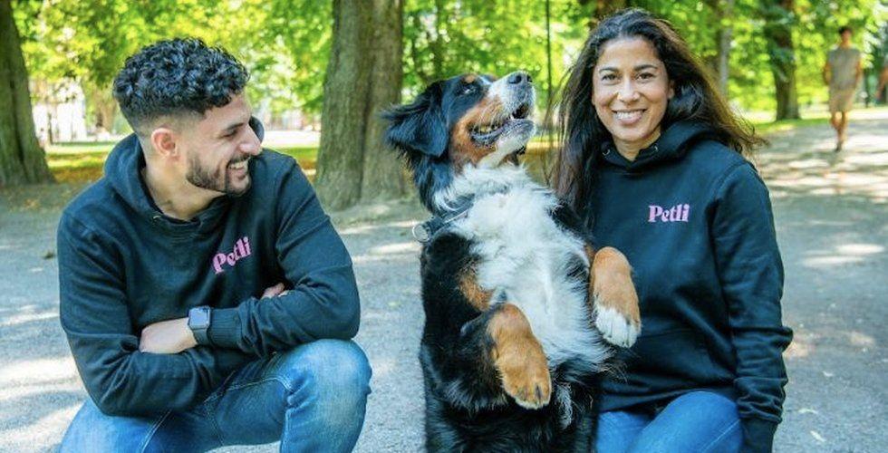 Petli rivstartar med nytt kapital – vill att du tränar din hund på nätet