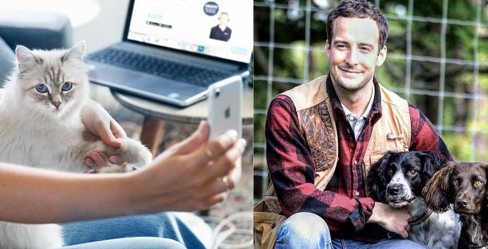 Firstvet expanderar – nätveterinären lanserar i Storbritannien