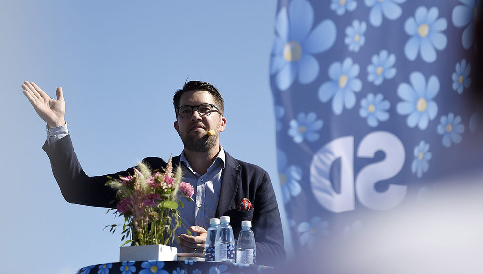 """Sverigedemokraterna: """"Datorspel ska förmedla svensk kultur"""""""