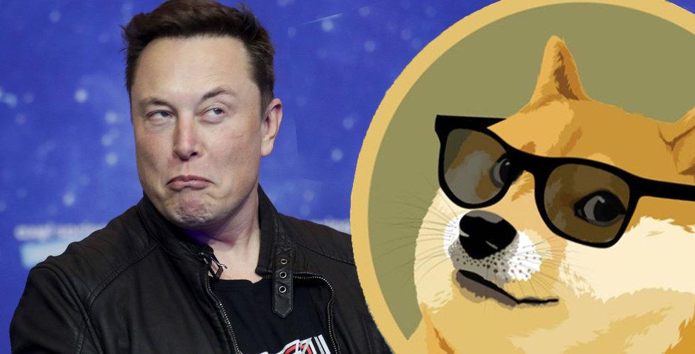 Dogecoin rusar efter tweet från Elon Musk