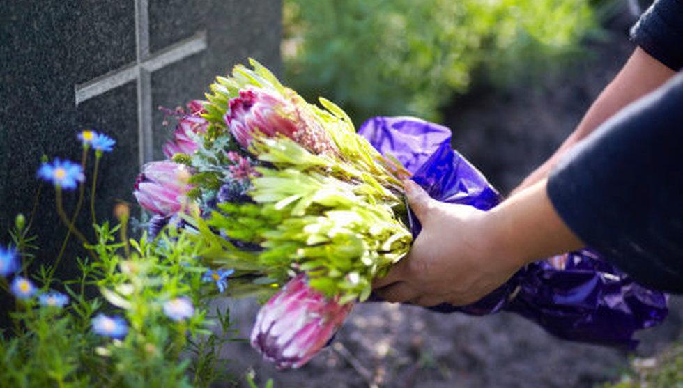 Blommor ska ge nytt liv åt svensk begravnings-startup