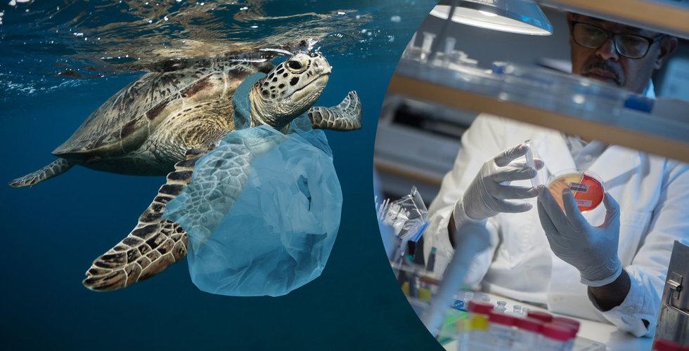 """Världen dränks i skräp – svenskar tar fram plast som """"försvinner"""""""