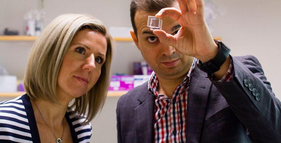 """Fula solceller kan bli minne blott – svensk startup ska ta fram en """"osynlig"""" solcell"""