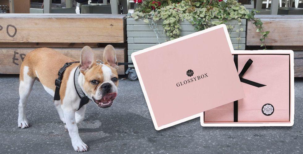 Glossybox vd lämnar – för satsning på lyxig djurmat