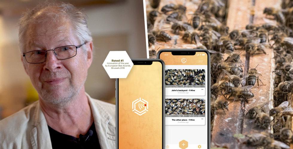 BeeScannings app ska rädda världens biodlingar – använder AI för att hitta parasiter