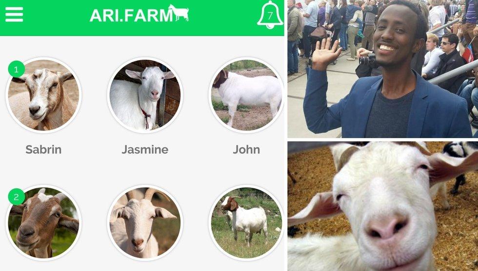 Mohamed Jimales nya app ska få dig att köpa getter – i Somalia