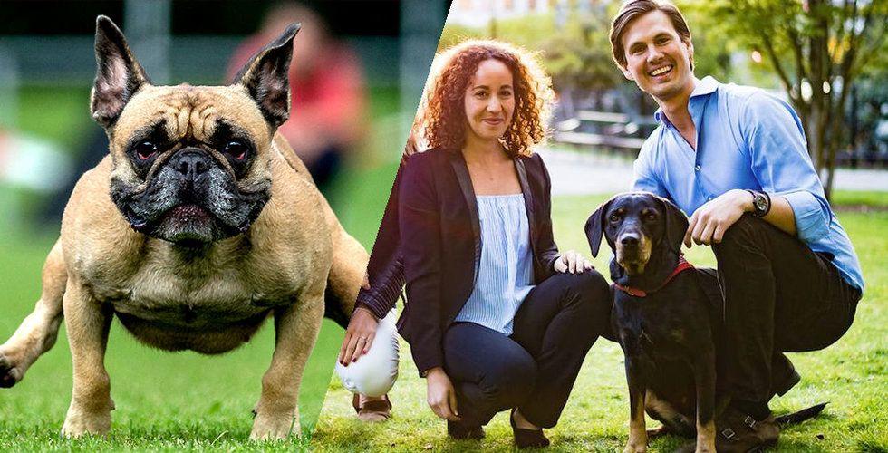 Breakit - Voff! Har 30.000 godkända hundpassare – får mångmiljonregn