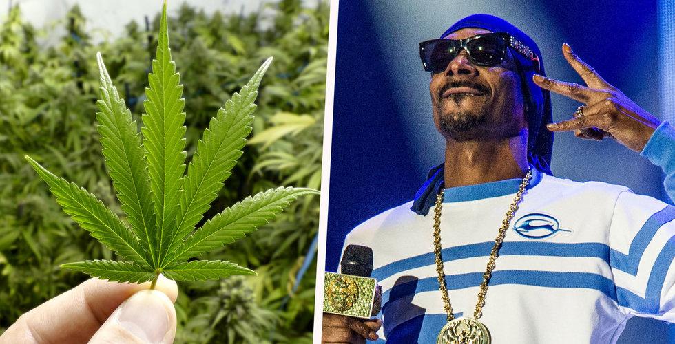 Breakit - Snoop Dogg blir riskkapitalist – satsar bara på cannabis