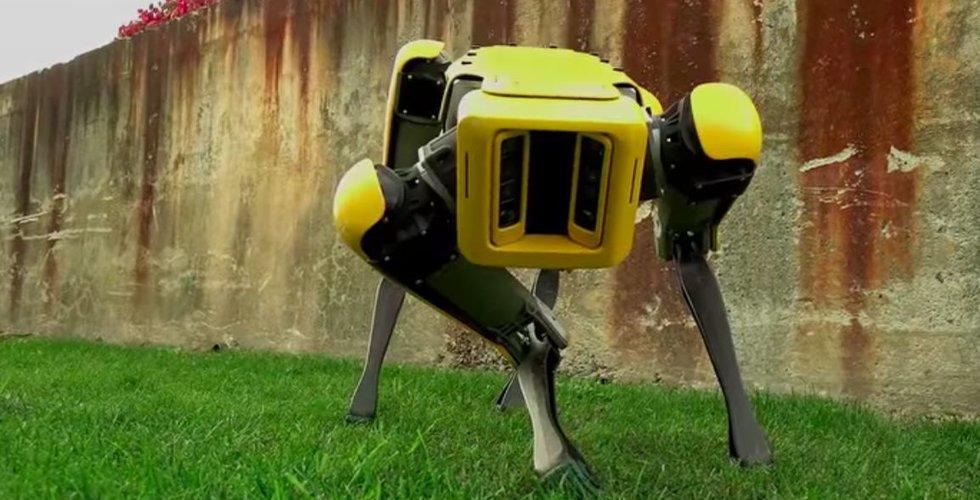 Boston Dynamics ska sälja robotliknande hund nästa år