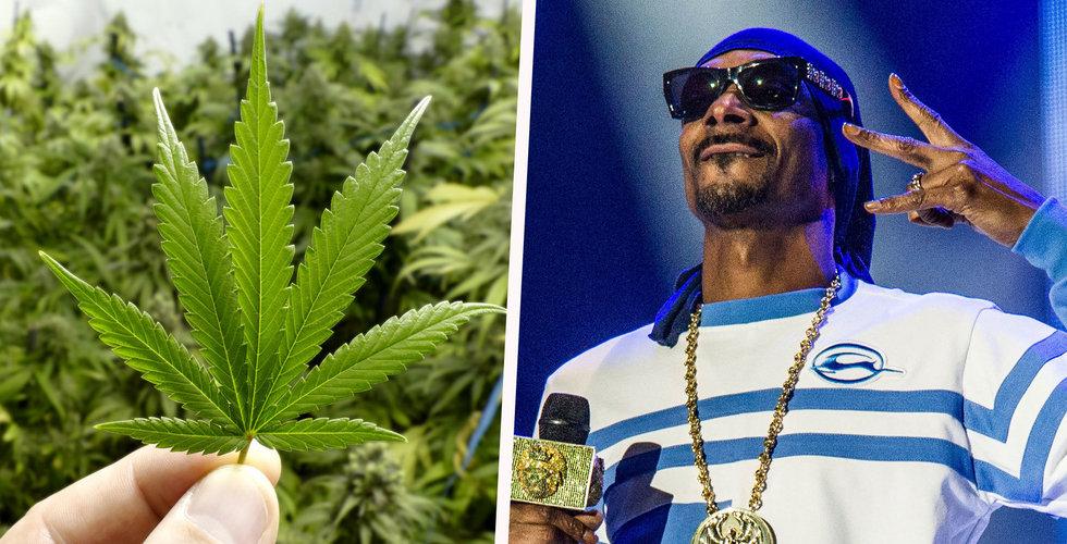 Snoop Dogg får in över 800 miljoner till sitt riskkapitalbolag som bara satsar på cannabis