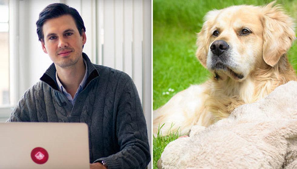 Breakit - Svenskt Airbnb för hundar växer – tar in pengar av King-grundarna