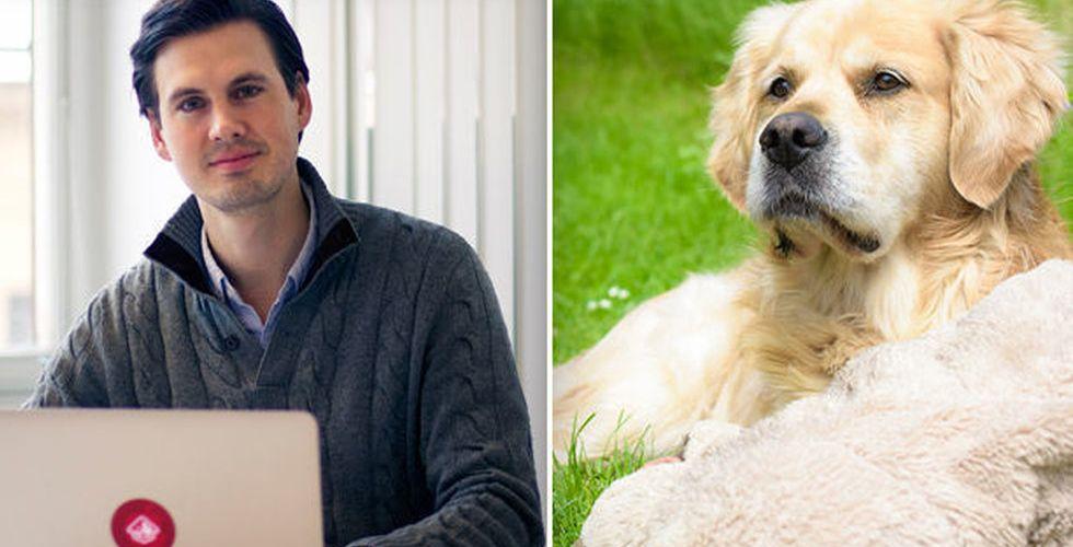 Svenskt Airbnb för hundar växer – tar in pengar av King-grundarna