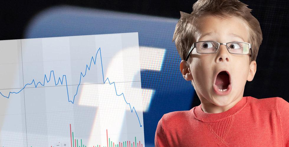 2000 miljarder (!) utraderade för Facebooks aktieägare