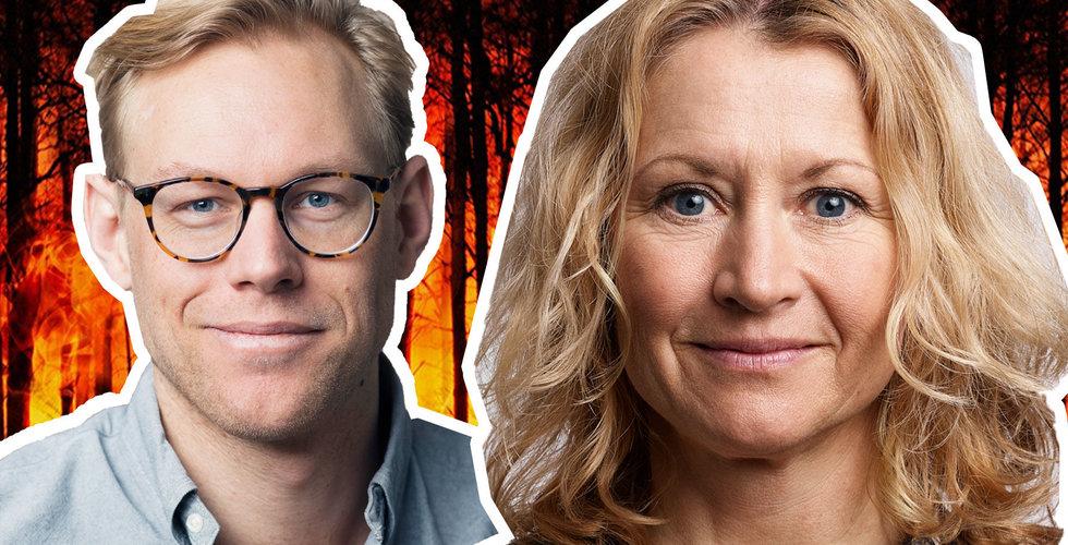 Sting och Norrsken gör gemensam sak – vill lösa klimatkrisen