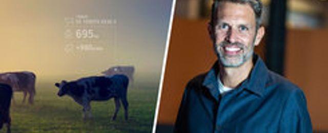 Hencol vill digitalisera bönderna – och låta kossorna väga sig själva