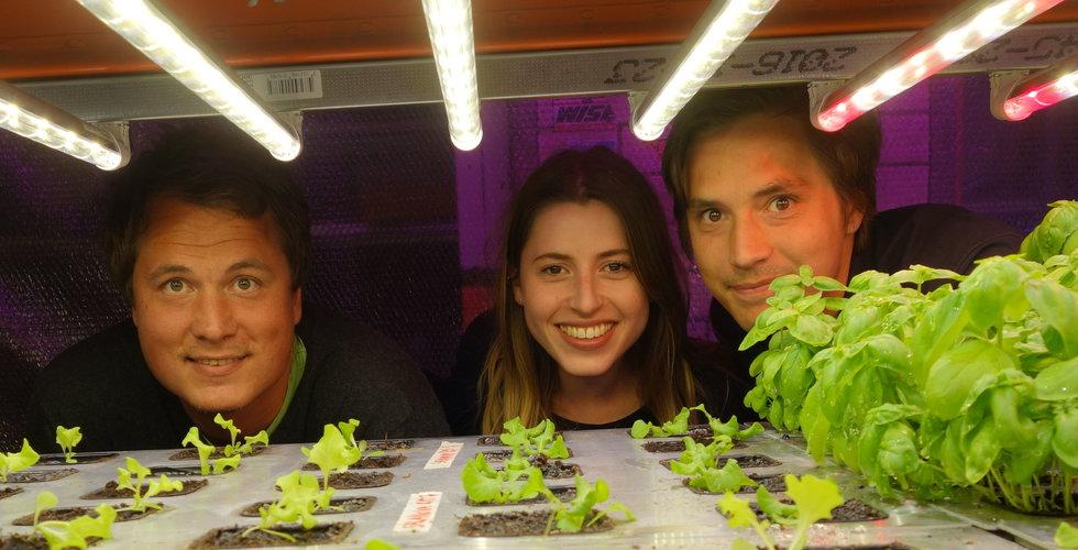 """Grönska skalar upp sin smarta stadsodling: """"Kan ta stora kliv"""""""