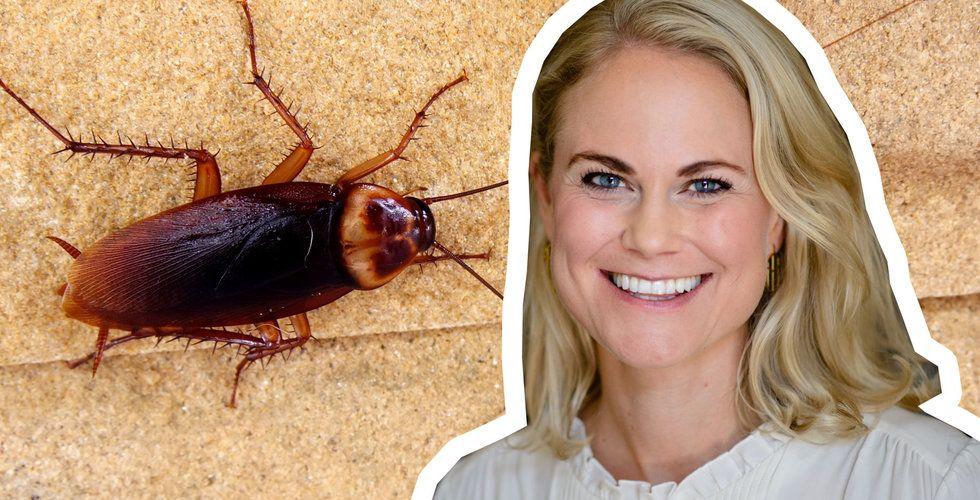 """Camilla Björkman om mediebranschen: """"Vi är som kackerlackor"""""""