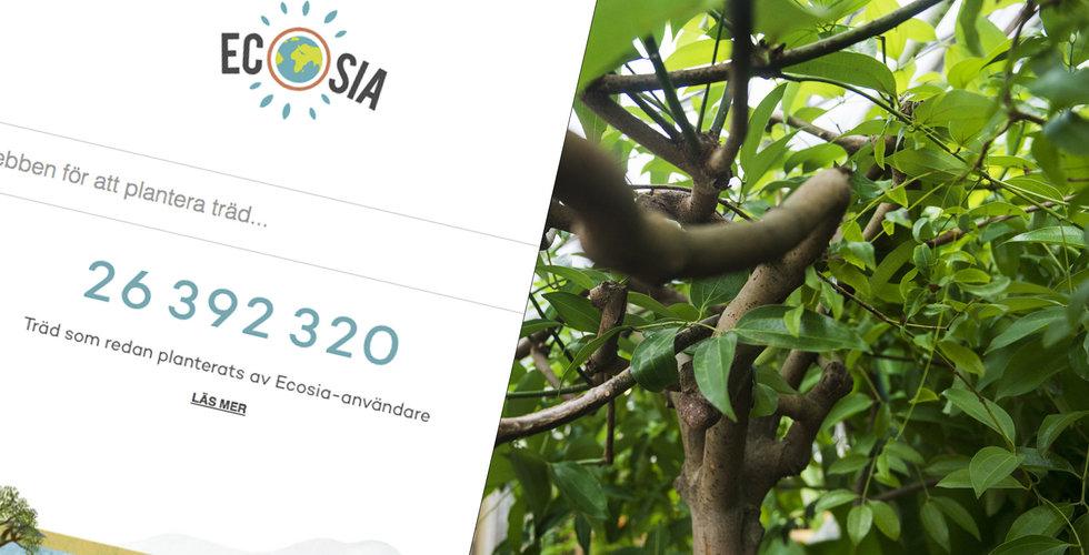 Ecosia vill förbättra världen – genom att plantera träd med dina klick
