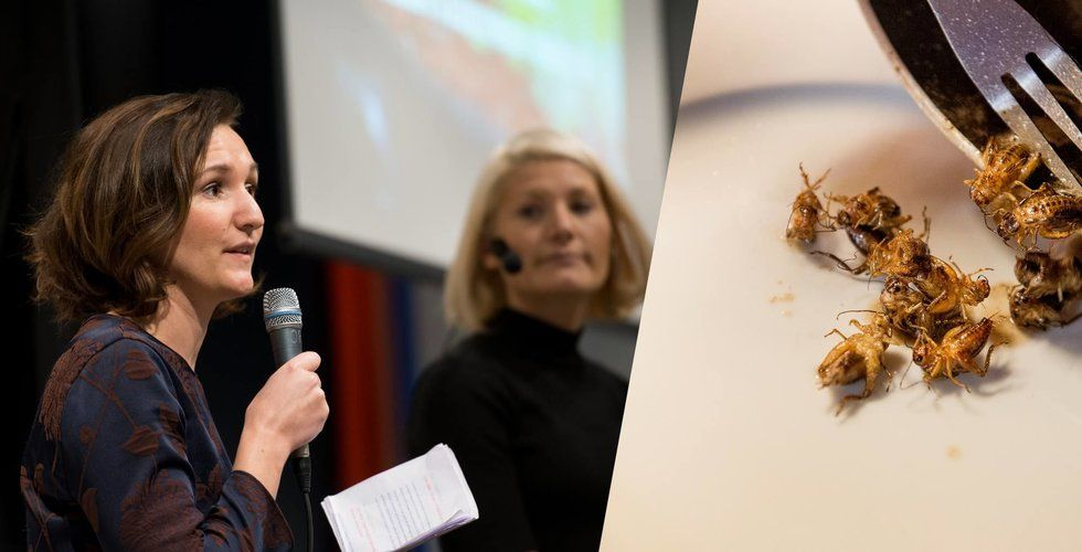 Insektsbolaget Hakuna Mat går i konkurs efter besked från Livsmedelsverket