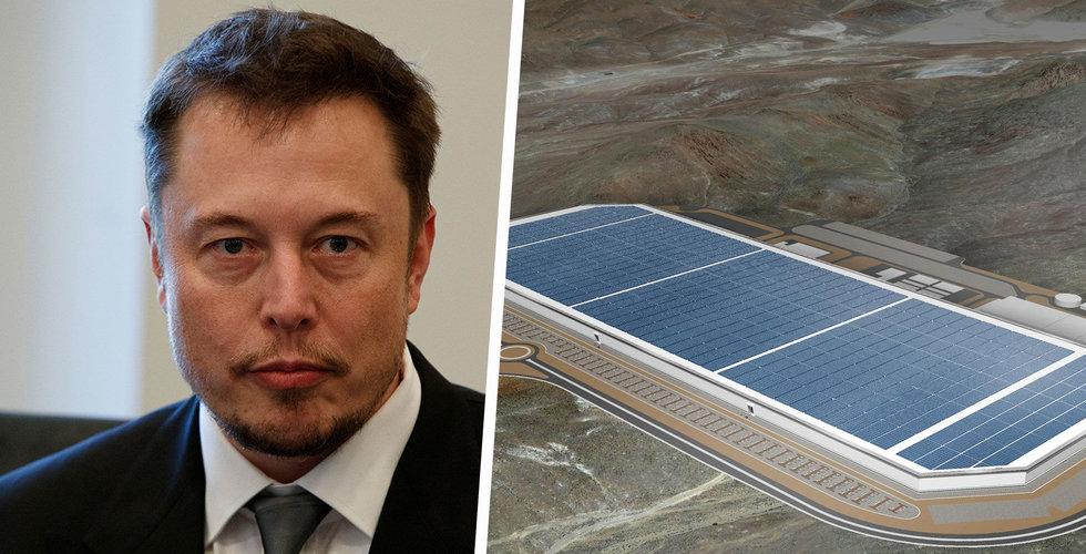 Tesla tvingas pausa förberedelserna av sin tyska Gigafactory