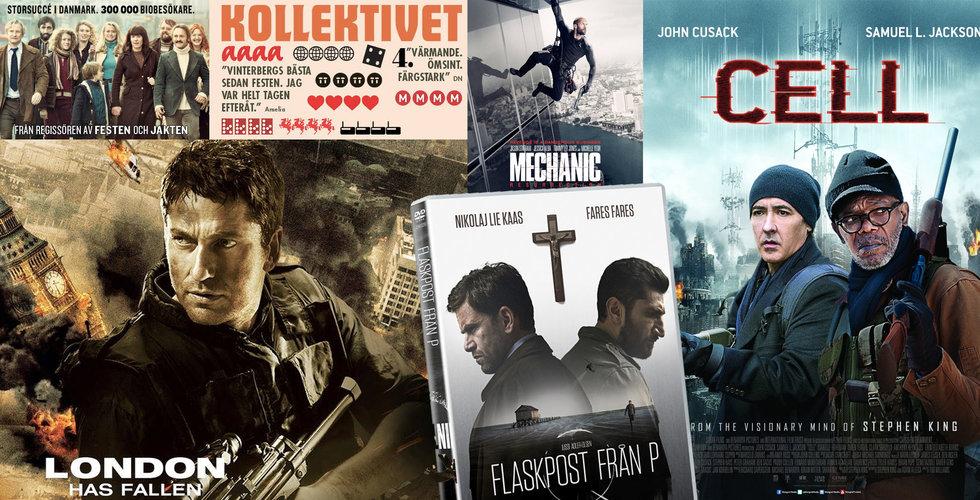 Fildelarjakten i 5 steg – här är filmerna som kan ge kravbrev