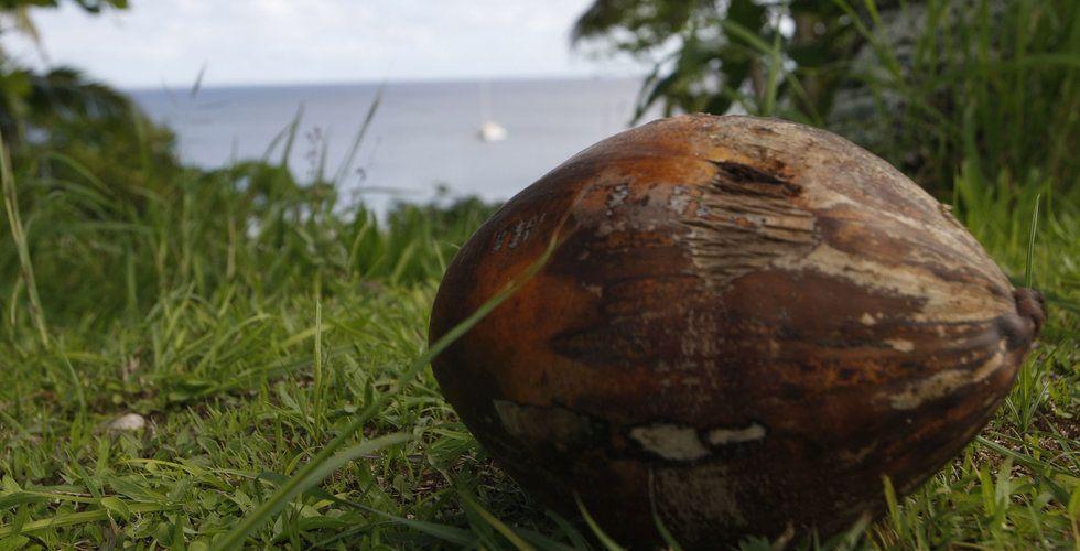 Ön Niue stämmer Internetstiftelsen i Sverige