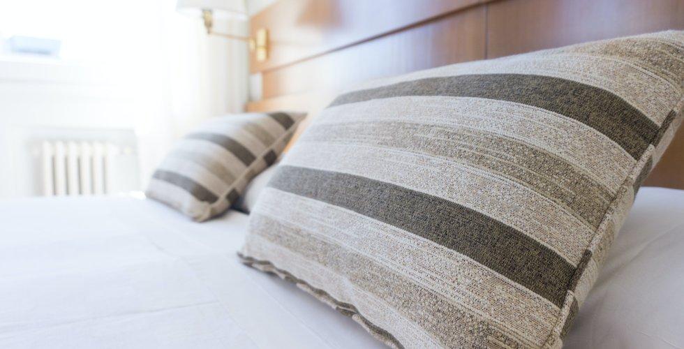 Halverade intäkter för logi för hotellen i sommar