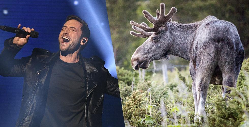 Notering skjuts upp för kändisarnas jaktapp The Great Wild
