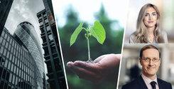 Grönt är det nya svarta – har du koll på nya EU-reglerna om hållbara finanser?