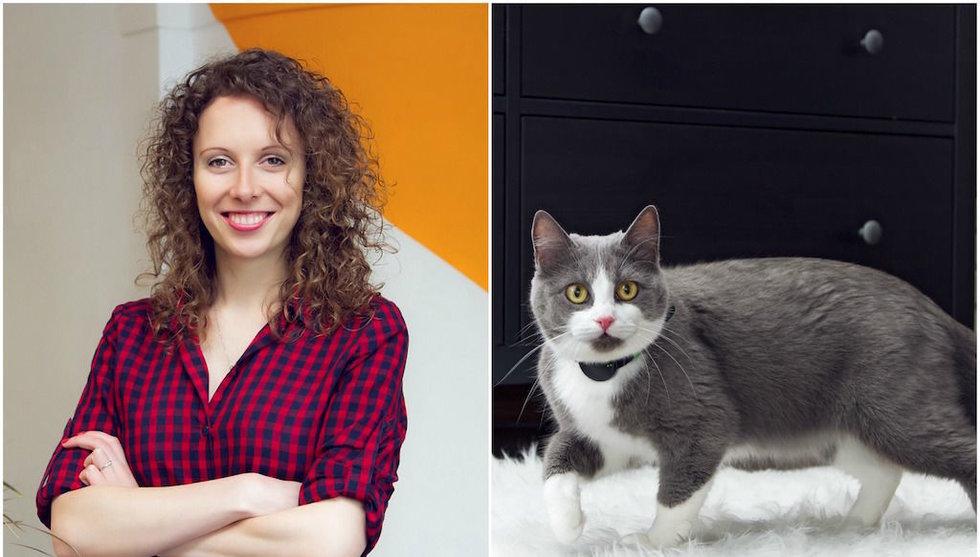 Det smarta halsbandet Moggie vill revolutionera kattälskarnas liv