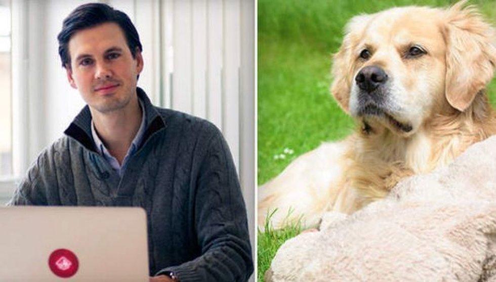 """Breakit - Nu lanseras Dog Buddy i Sverige: """"Potential att bli enorm marknad"""""""