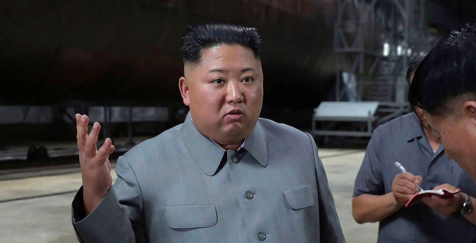 Nordkorea har stulit kryptovaluta för 19 miljarder – för att bygga massförstörelsevapen