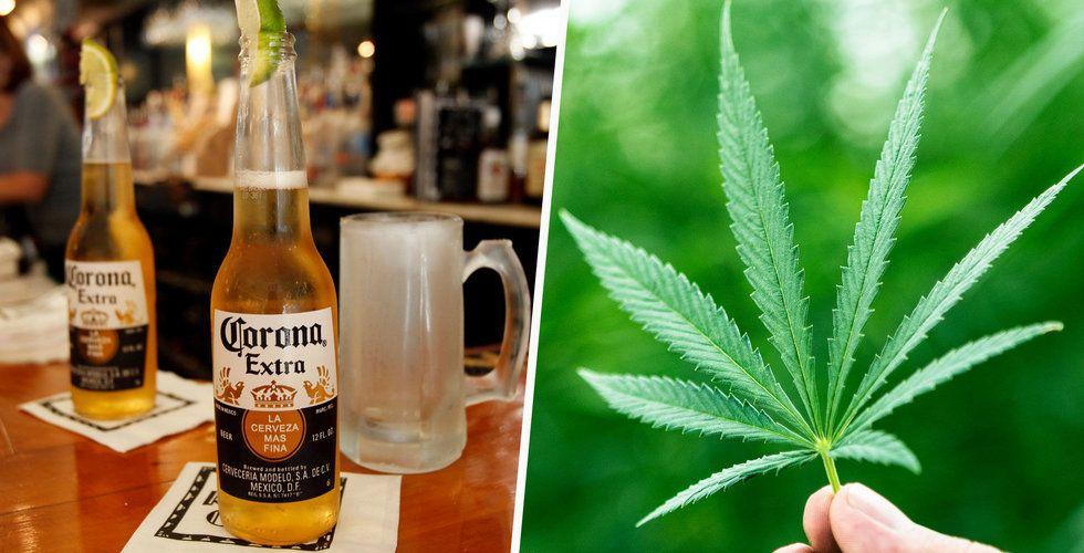 Breakit - Bryggarna bakom Corona satsar miljarder i cannabisföretag