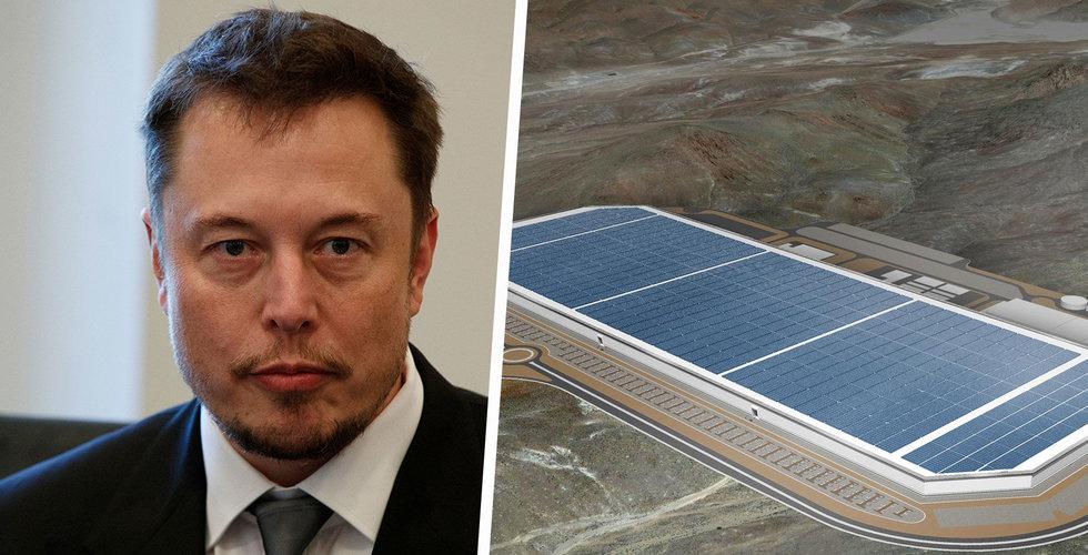 Tesla får domstolsgodkännande att ta bort skog för tysk Gigafactory
