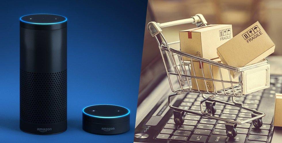 E-handel via röststyrning – en flopp hittills