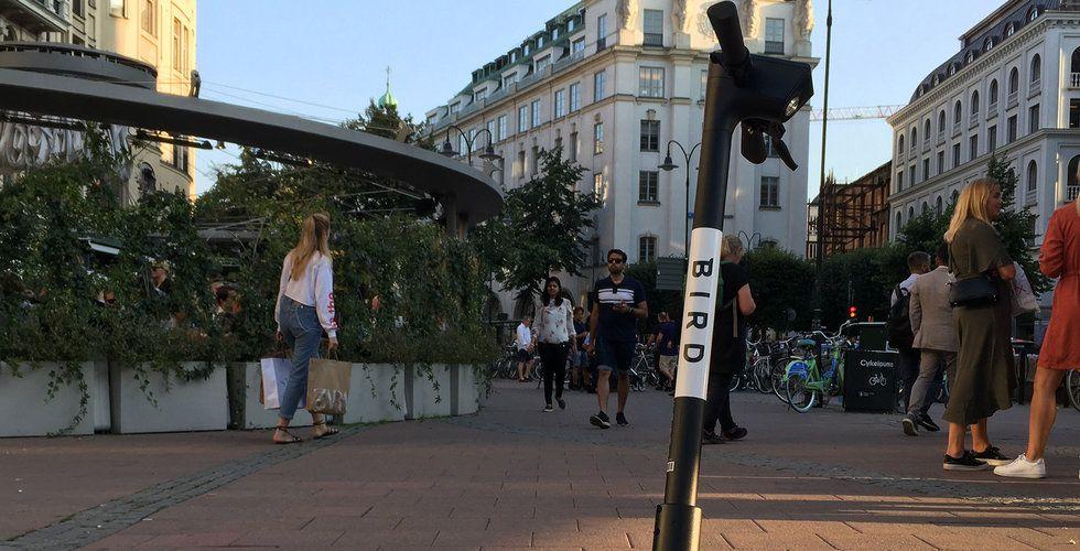 Voi, Tier och Lime får tuff konkurrens – Bird lanserar i Sverige