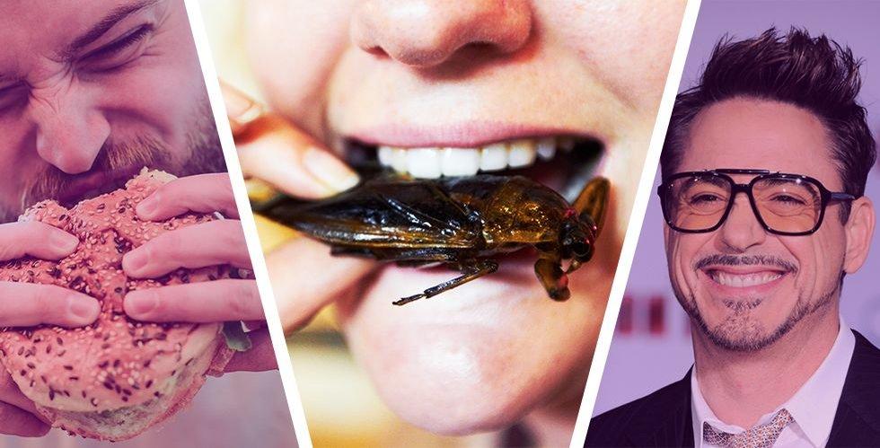 Larver och maskar – snart i din burgare? Därför kan insekter bli nästa miljardvåg inom food-tech