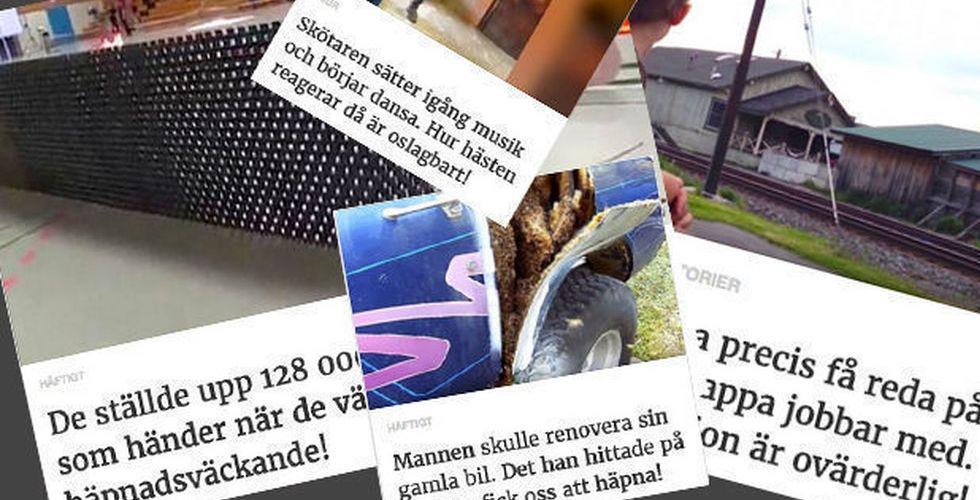 Strossle-grundare ny delägare i snabbväxande viralstartup