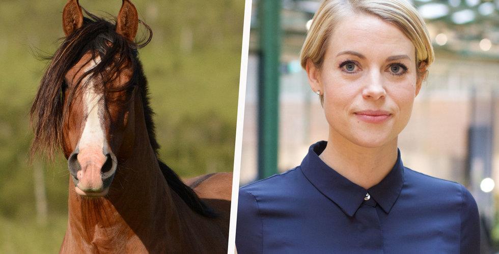 Backing Minds-ägda e-handeln Horsemeup i konkurs