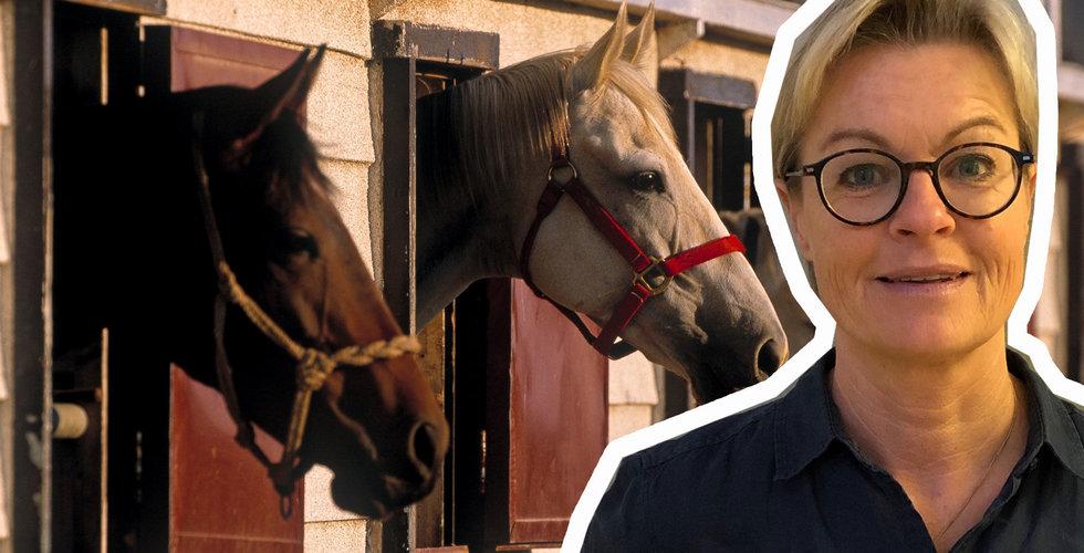"""Bookahorse ska bli ett Tinder för hästfolk:  """"Alla ska kunna rida"""""""